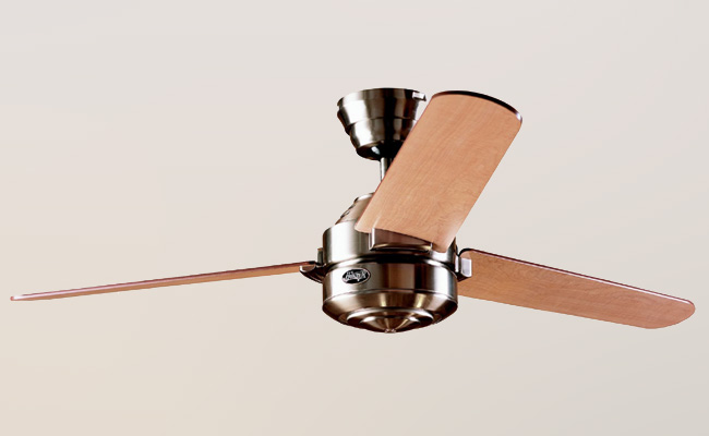 >Hunter Ceiling Fan Model #24243