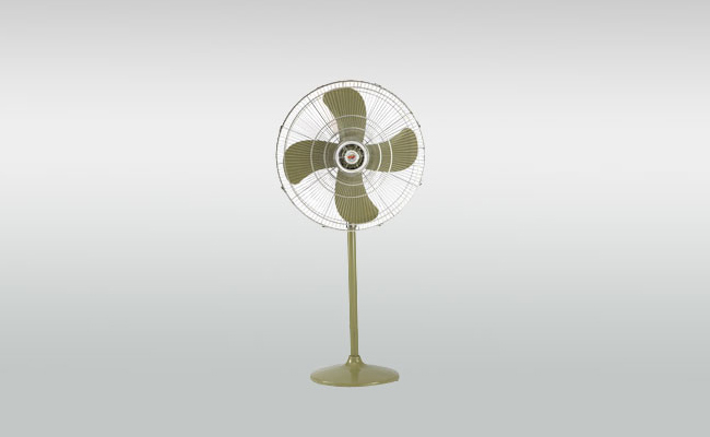 Royal Pedestal Fans Picture
